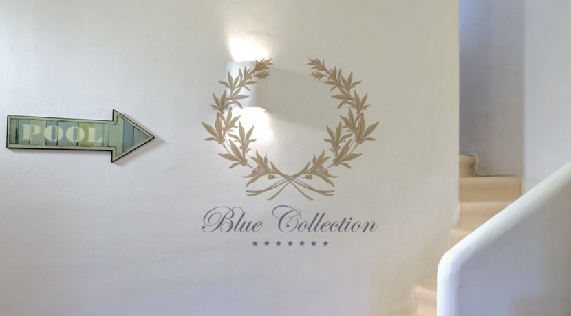 Bluecollection Mykonos, Greece, Luxury Villa Rentals, www.bluecollection.gr 1 (20)