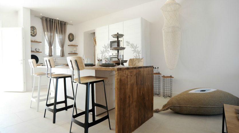 Blue-Collection-Athens-–-Mykonos-Selective-Real-Estate-Luxury-Villa-Rentals-Premium-Concierge-Close-Protection-Services-www.bluecollection.gr-7