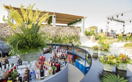 Luxury_Villa_for_Rent_in_Mykonos_Greece_SPC1 (15)