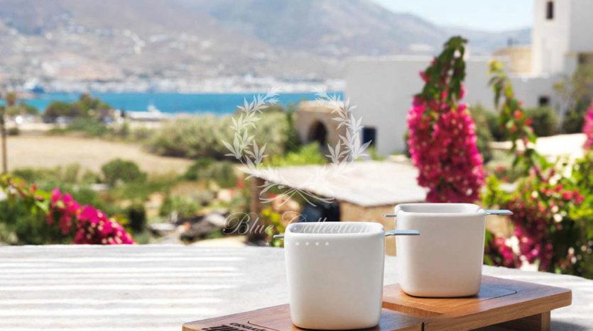 Greece_Luxury_Villas_Paros_PRS-2-(37)